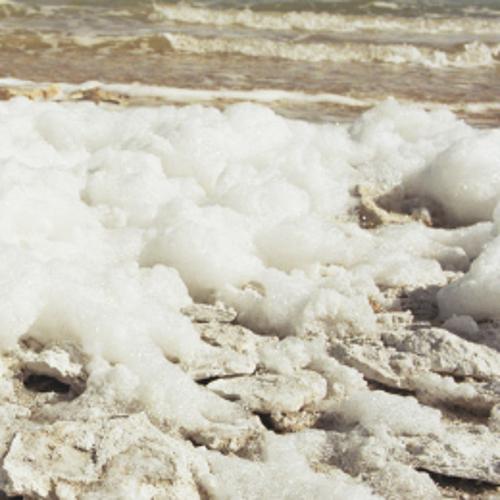 盐碱地土壤修复